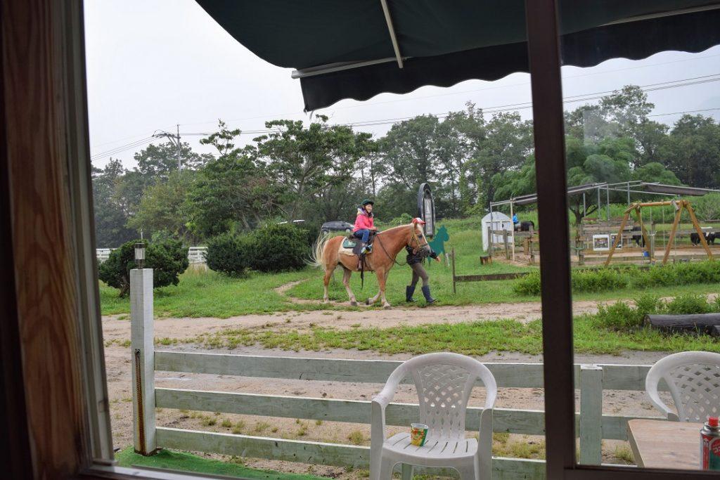 コテージの目の前を馬が通る